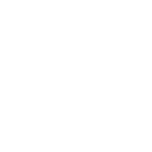 Speedy Completion